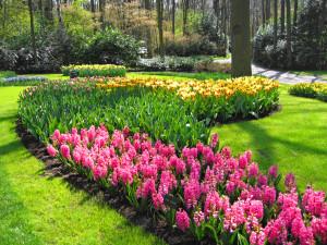 cenultra_gardening